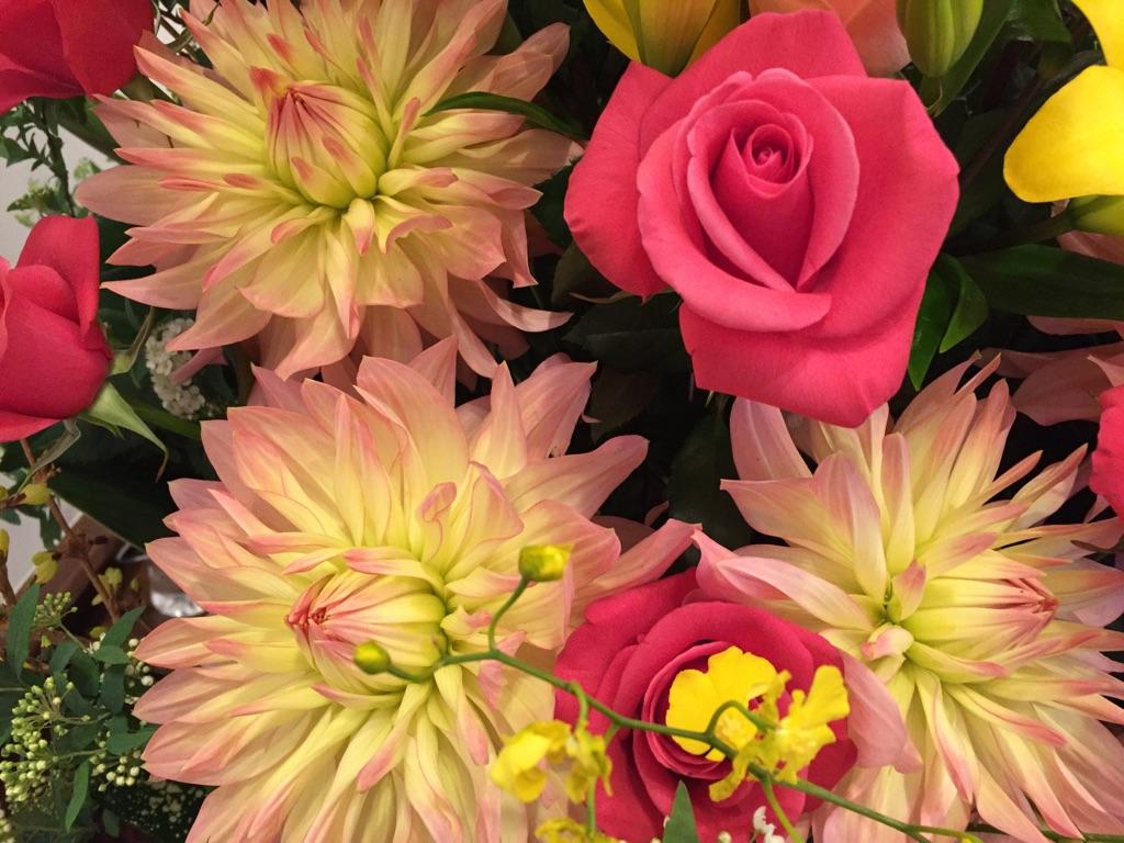 これから花は香りで選ぶ?! 意外に知られていないその効用