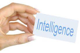 多重知能(MI)テストとストレングスファインダーの結果が極めて興味深かった件